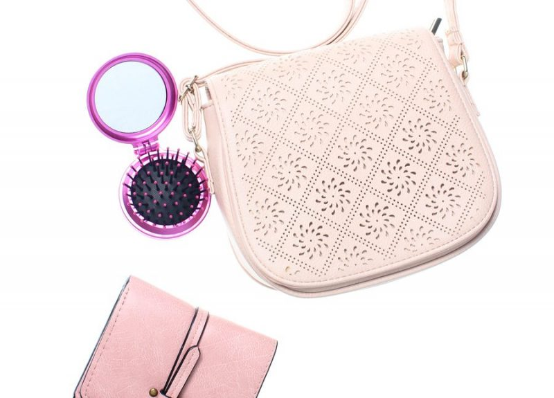 mini pink travel hairbrush with a light pink leather bag and pink wallet on a white background. best hair brush for fine hair viviscal hair blog